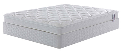 Mattress By Appointment Carolina Collection Mattresses